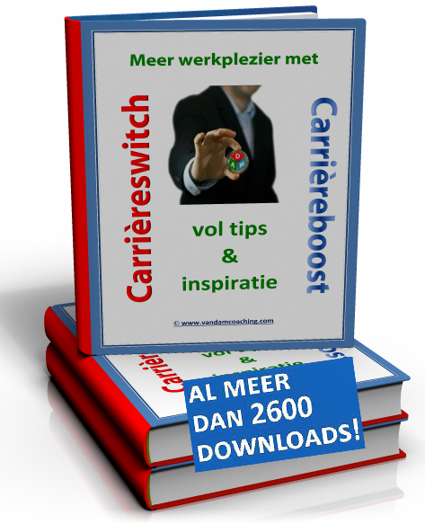 Ebook Meer werkplezier carrièreswitch carrièreboost large