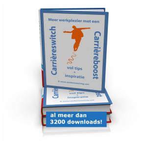 E-book Meer werkplezier met een carrièreswitch of carrièreboost