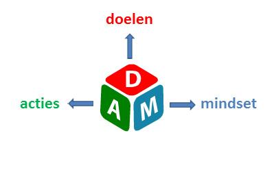Van Dam Coaching = doelen acties mindset